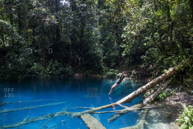 Kerinci Valley, Sumatra, Indonesia - February 26, 2015: A man dives off a log into a crystal clear sapphire pool shrouded in jungle. Kerinci Valley, Sumatra, Indonesia.