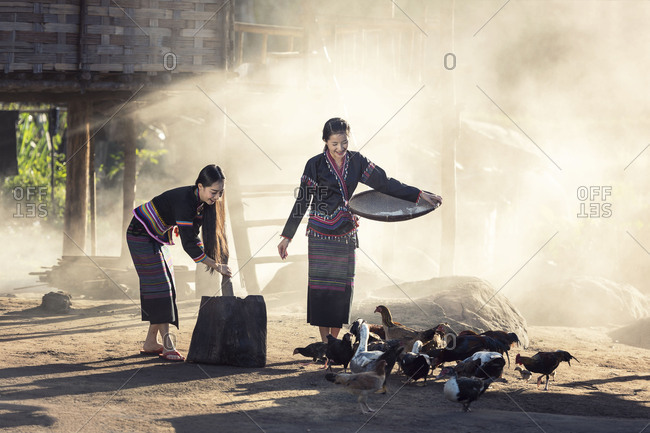 Asian girls (Hmong) feeding chickens at Laos countryside