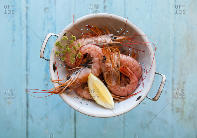 Overhead view of fresh prawn shrimps in a colander
