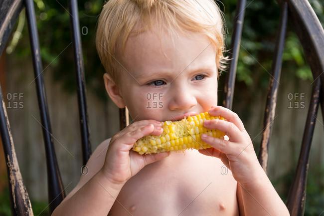 Toddler boy eats corn on the cob