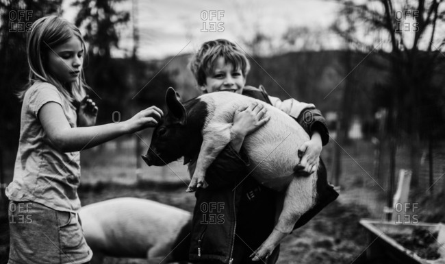 Kids holding and petting a small pig
