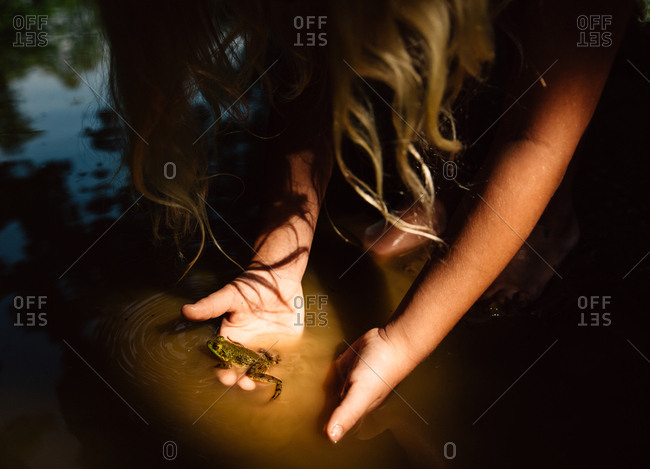 Flashlight beam shines on girl's hands with frog