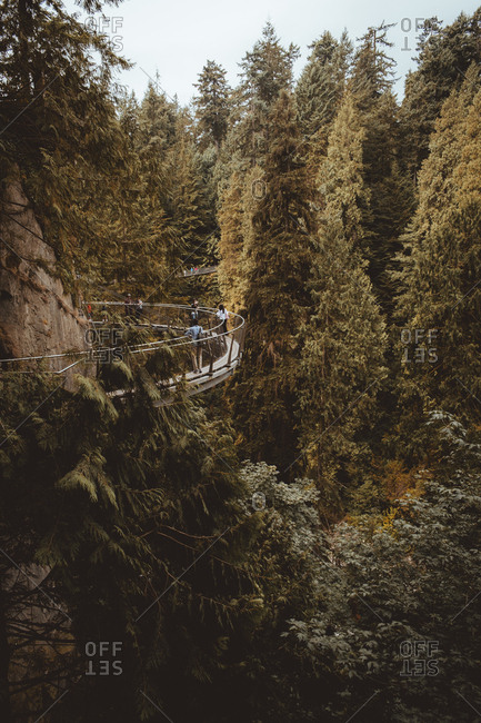 Vancouver, Canada - August 20, 2015: Small suspended path in the forest in Capilano