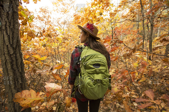 Rear view of young woman with backpack walking in forest during autumn