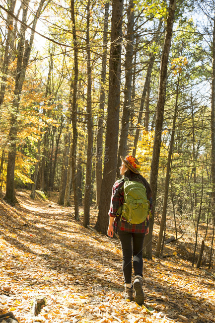 Young woman with backpack walking alone in forest during autumn