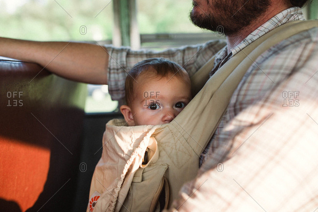Portrait of baby in baby carrier on father's chest