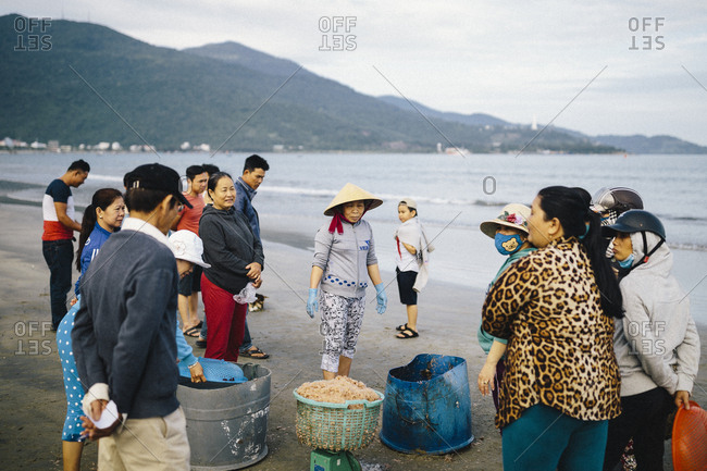 March 30, 2017: Fishermen haul in catches of baby shrimp, an ingredient used in several local dishes, to market ladies on the shores of the East Sea in Danang, Vietnam.