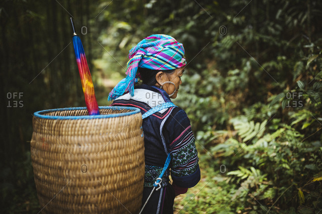 April 25, 2017: A Hmong guide leads a tour group through a bamboo forest in the Muong Hoa valley in northern Vietnam.