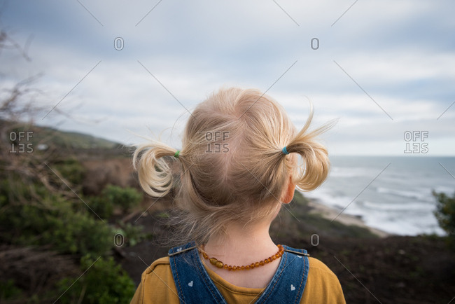 Back view of toddler girl with pigtails looking at beach