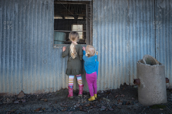 Two young girls look through window of rustic metal building