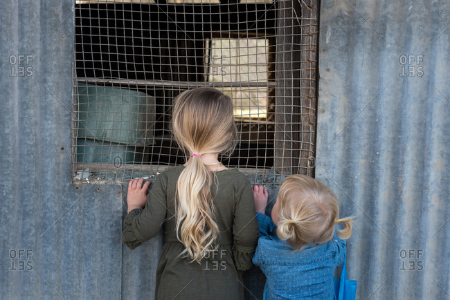 Girls looking through window of metal shed