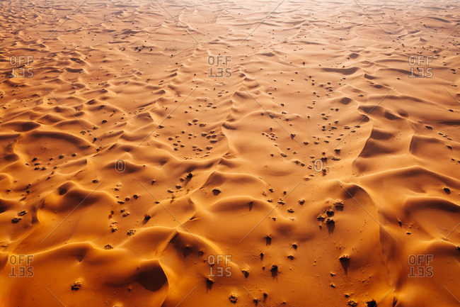 Aerial landscape photo of sand dunes of the Arabian desert during sunrise.