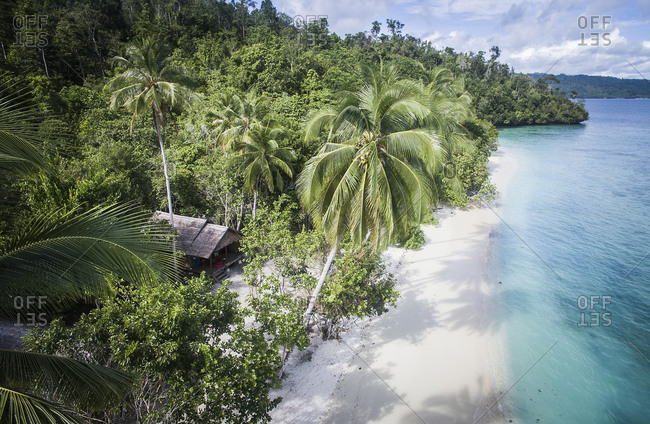 High angle idyllic view of shore at Raja Ampat Islands