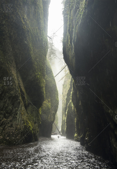 Distant view of hiker at Oneonta Gorge