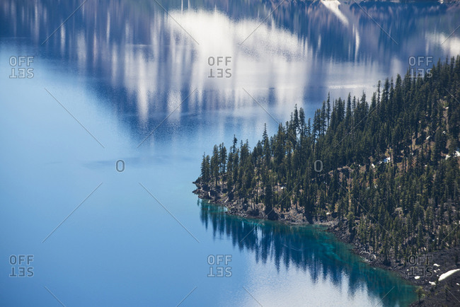 High angle view of trees by Crater Lake