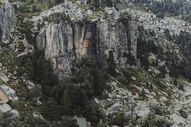 Cliffs and trees along mountainside