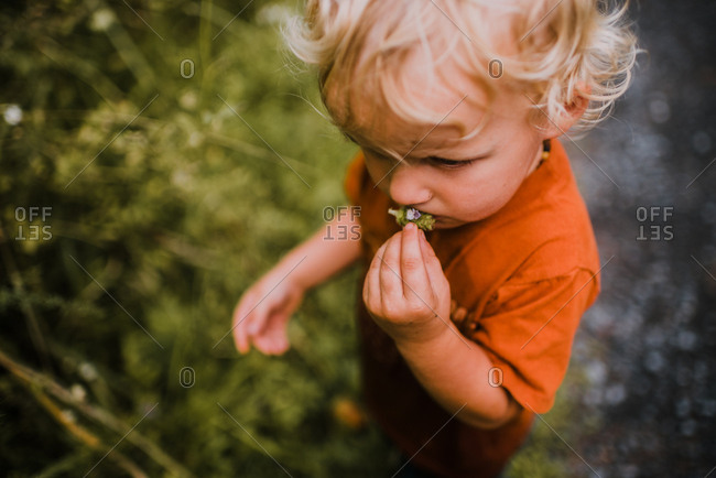Boy with curly hair holding wildflower