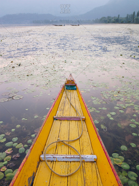 A shikara, a local wooden boat, on Lake Dal, Kashmir, India