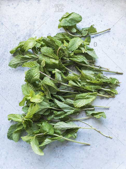 Overhead view of stems of mint leaves