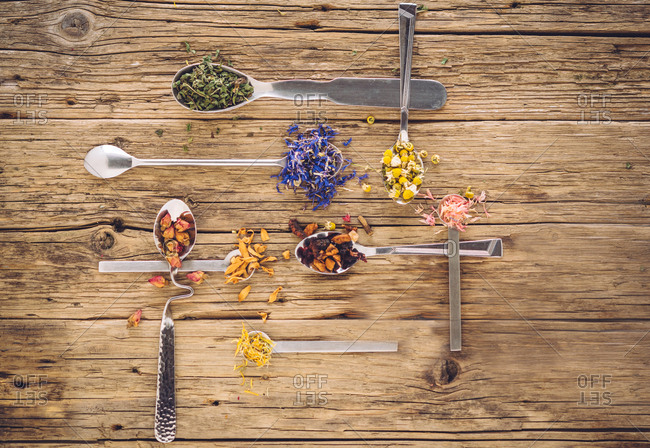 Eight different tea spoons filled with different tea herbs such as chamomile and lavender