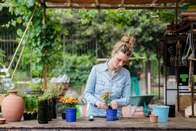 Woman in potting shed potting plant