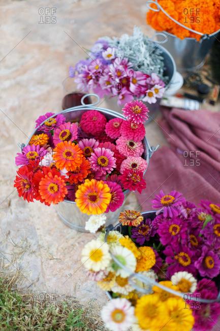 Flowers in buckets outside