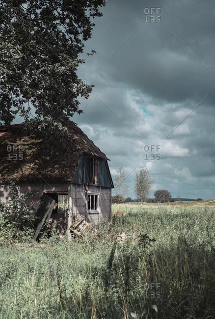 Neglected farmhouse in wild garden under dark cloudy sky
