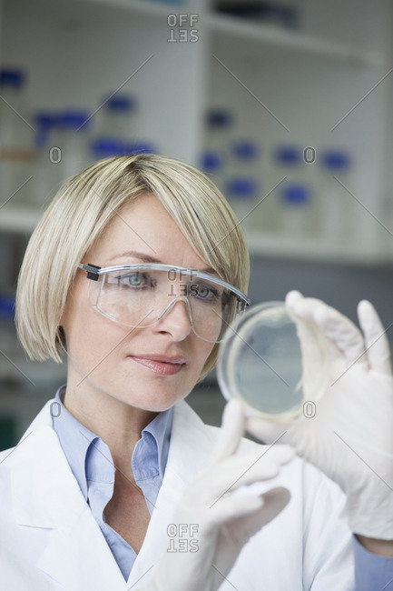 Scientist with petri dish in laboratory