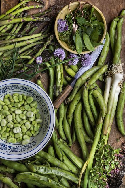 Spring vegetable harvest