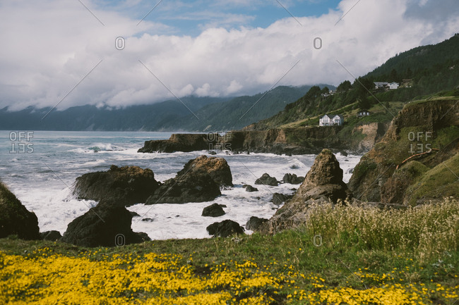 Beautiful springtime california coastline