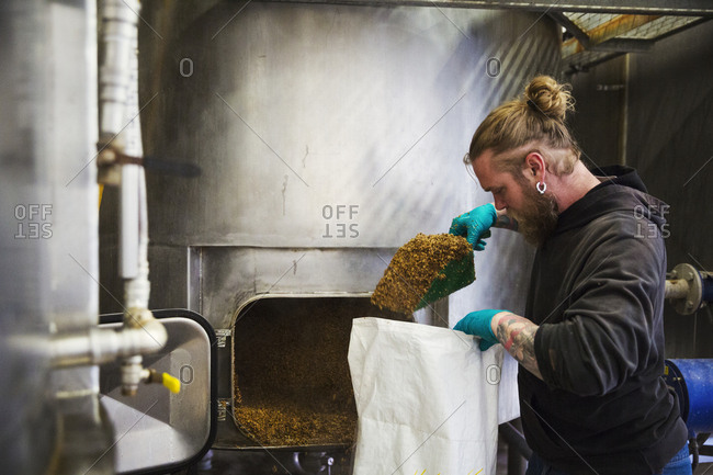 Man scraping shoveling spent grain from a large kettle into a bag in a brewery