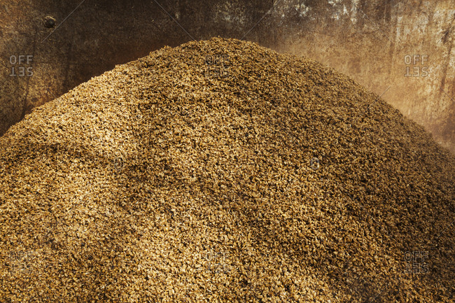 Close up of a heap of spent grain used in the brewing process