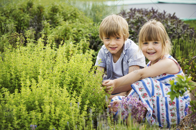 Boy and girl kneeling side by side by a shrub in a garden, smiling at camera