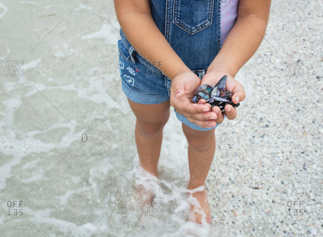A girl holds shells at the shore