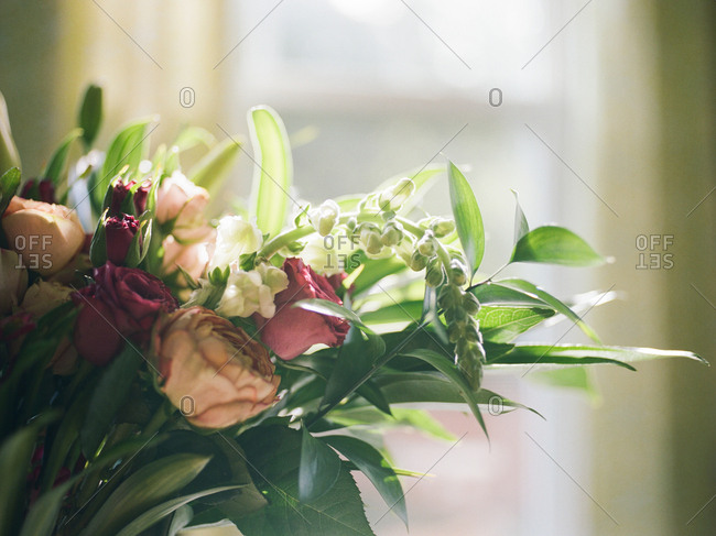Bouquet of roses and greenery in sunlight from a window