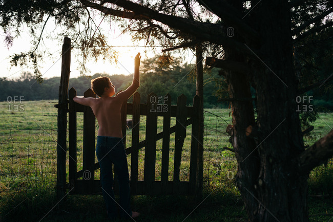 Boy standing at the gate to  a field at sunset