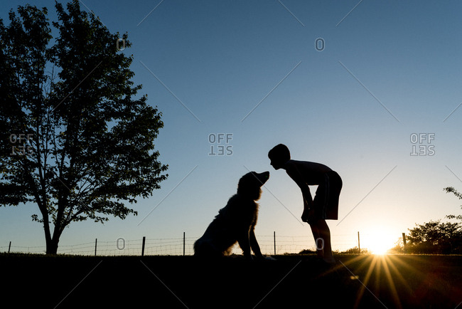 Boy bending to kiss his dog in a field at sunset