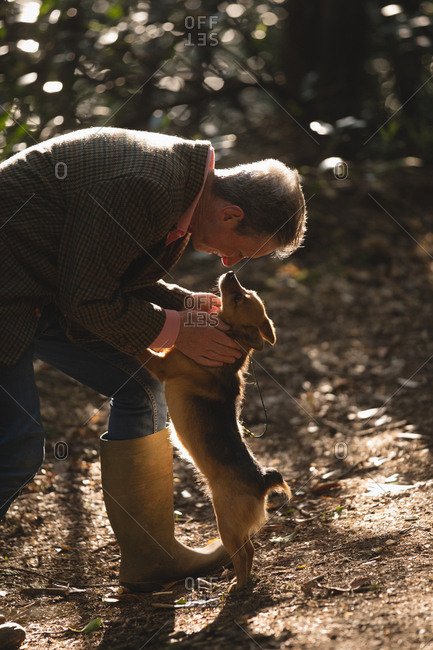 Mature man with his pet dog in forest