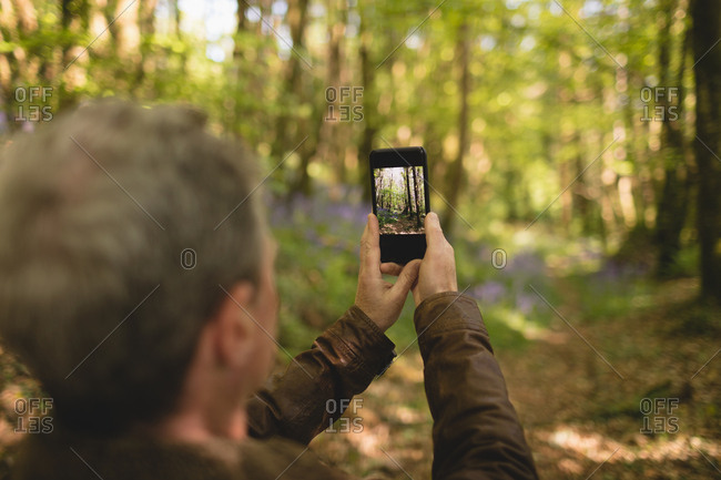 Man clicking photos from mobile phone in forest