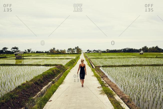 Woman in dress among rice fields, Bali