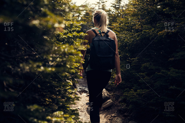 Woman hiking in New Hampshire woods