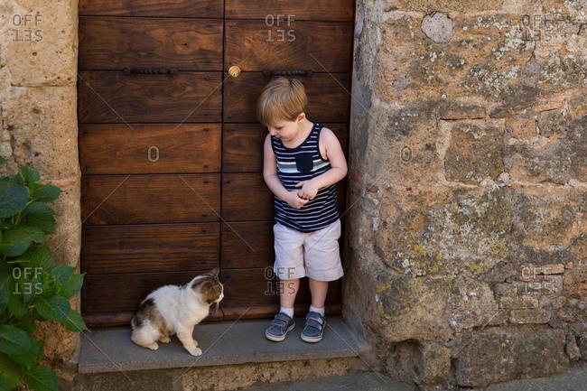 Boy meets stray cat