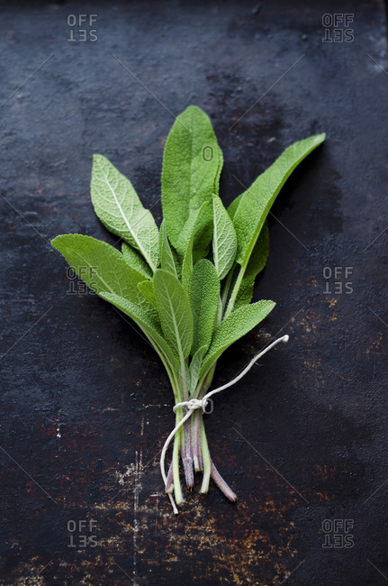Bunch of fresh sage