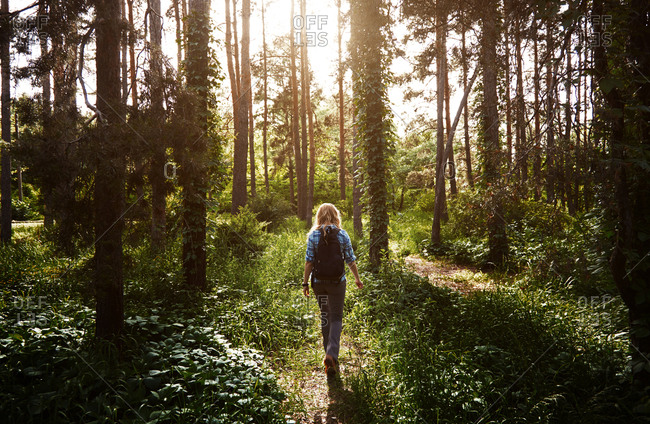 Woman with backpack walking in a forest