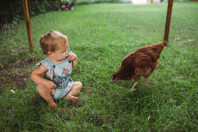 Infant girl sitting in grass with chicken