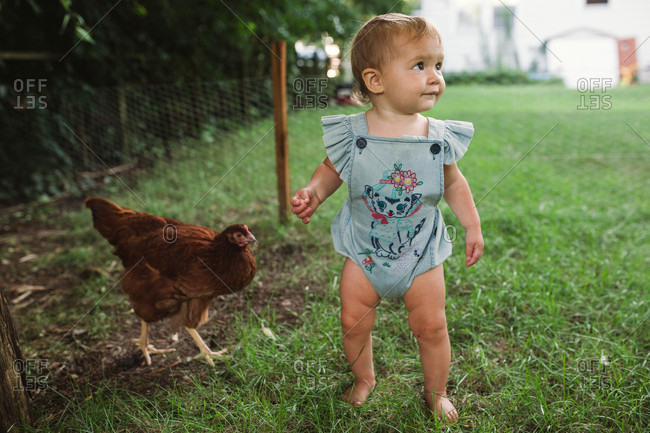 Baby girl walking in grass with chicken