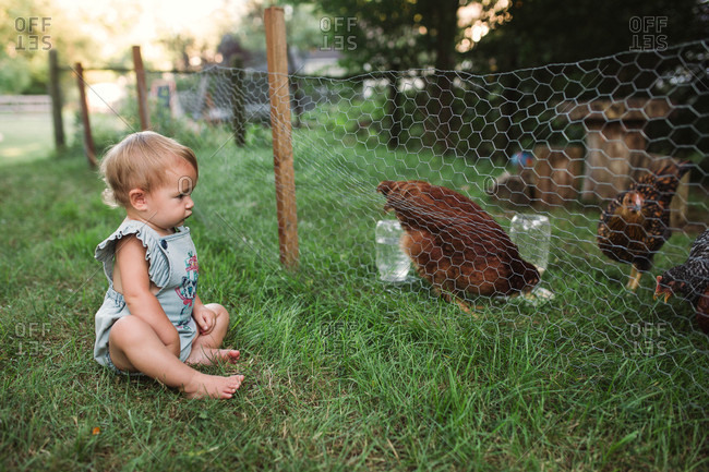 Infant girl sitting in grass looking at chicken through fence