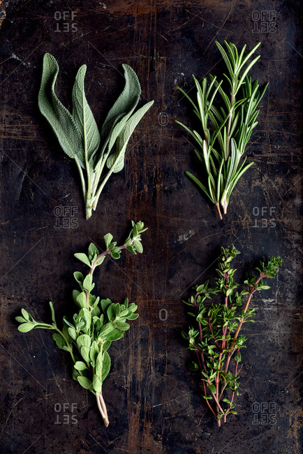 Different types of herbs on dark distressed rustic background