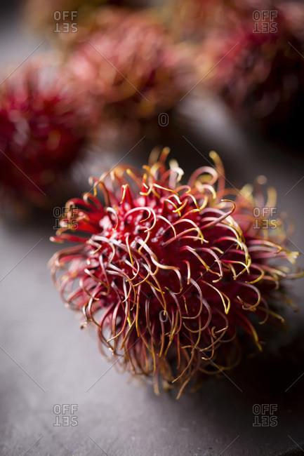 Rambutan macro shot