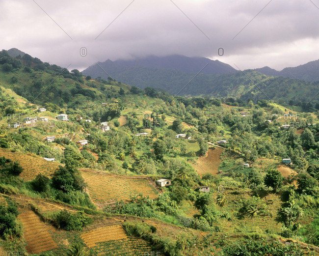Farmland in the valley, West Indies